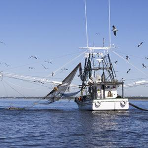 Shrimp Boat Accidents